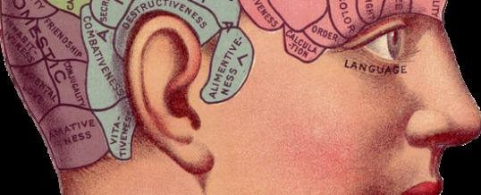 Hvordan påvirker reklamemusik hjernen?